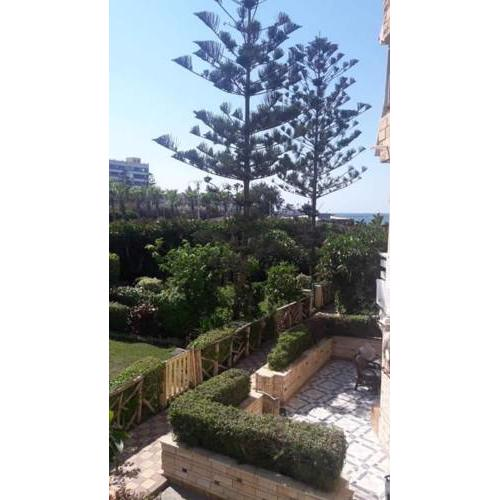 2 beds room, Garden sea view, first floor , Family only , معمورة شاطئ