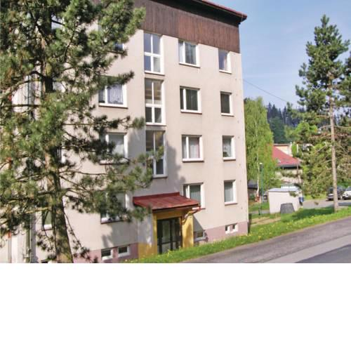 Apartment Smrzovka XII