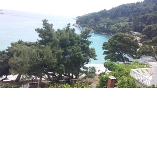 Apartments and rooms by the sea Cove Saplunara (Mljet) - 12849