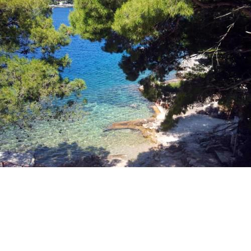 Apartments by the sea Sobra (Mljet) - 7531