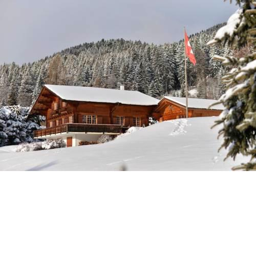 Chalet Gentiane des Neiges, near to the Aiglon college