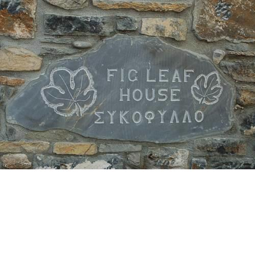 Fig Leaf House