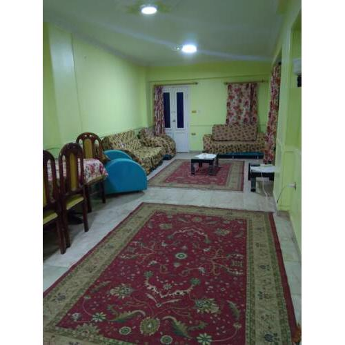 Furnished Apartment at Tanta