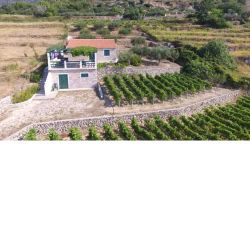 Holiday Home Vineyard house