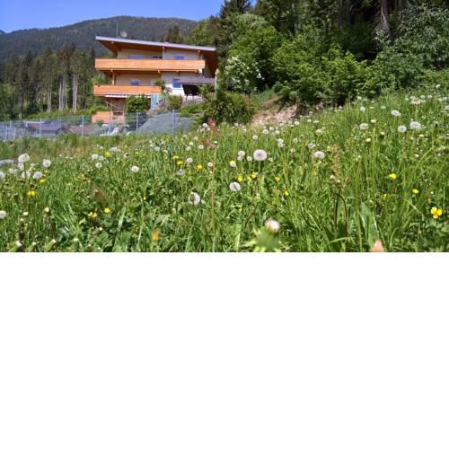 Holiday Home Zillertal - Haus Gigl
