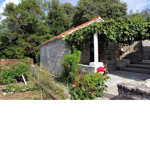 Holiday house with WiFi Zrnovo (Korcula) - 4876