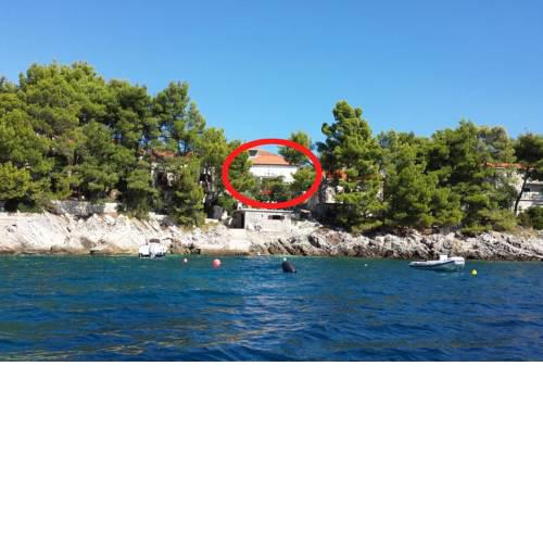 Seaside holiday house Brna (Korcula) - 9296