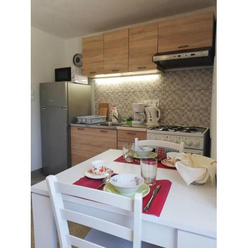 Studio Apartment Mileta